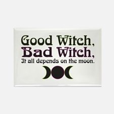 Good Witch, Bad Witch.. Rectangle Magnet (10 pack)