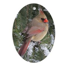 Cardinal Ornament (Oval)