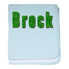 Brock Grass baby blanket