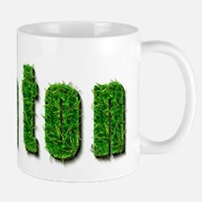 Ashton Grass Mug