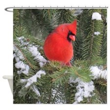 Spruce Cardinal Shower Curtain