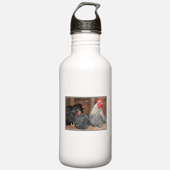 chickens on a roost Water Bottle