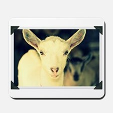 goat: clotilde Mousepad
