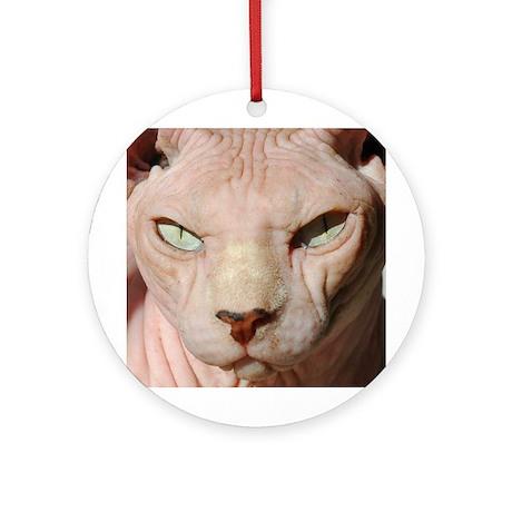 sphynx_eyes.jpg Ornament (Round)