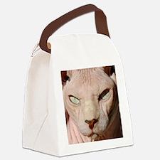 sphynx_eyes.jpg Canvas Lunch Bag