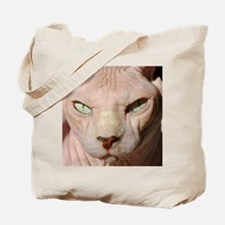 sphynx_eyes.jpg Tote Bag
