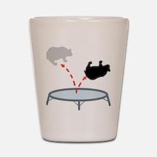 Trampoline Bear Shot Glass