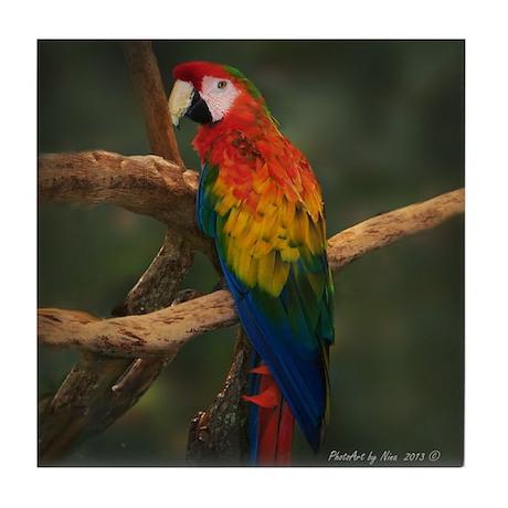 Hybrid Macaw Tile Coaster