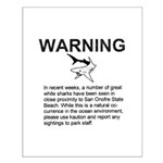 San O Great White Shark Warning Poster