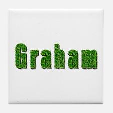 Graham Grass Tile Coaster