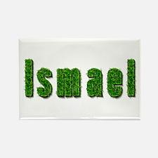 Ismael Grass Rectangle Magnet