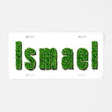 Ismael Grass Aluminum License Plate