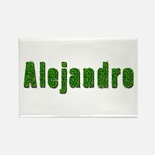 Alejandro Grass Rectangle Magnet