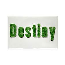 Destiny Grass Rectangle Magnet