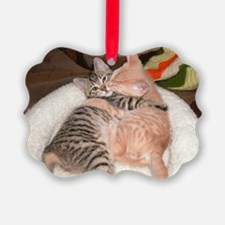 kitty Hug Ornament