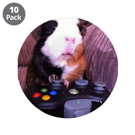 "Guinea pig on xbox controller 3.5"" Button (10 pack"