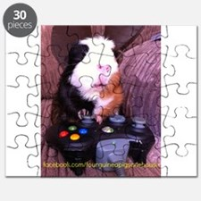 Guinea pig on xbox controller Puzzle
