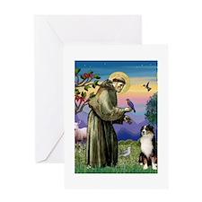8x10-StFran-AustShep2 Greeting Cards