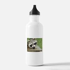 Racoon Water Bottle