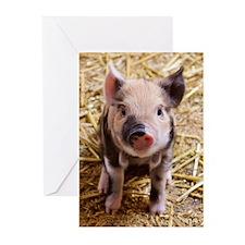 Piglet Greeting Cards (Pk of 20)