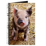 Pig Journals & Spiral Notebooks