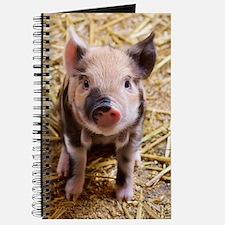 Piglet Journal