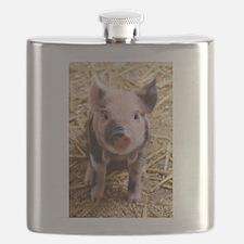 Piglet Flask