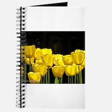 Yellow Tulips Journal