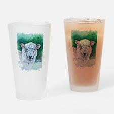 Sheep Merino New Zealand Drinking Glass