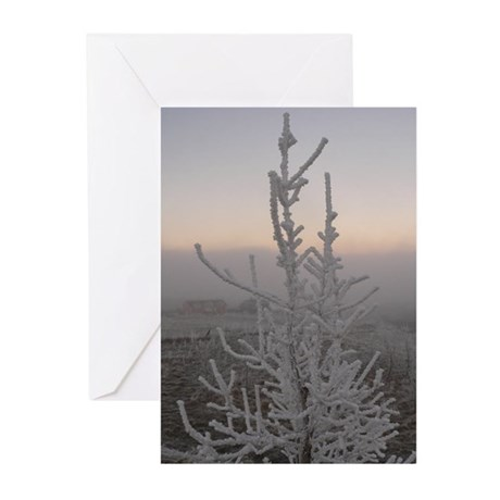 Frost At Dusk Solstice Cards (Pk of 10)