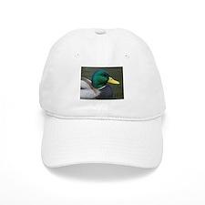Mallard Duck Baseball Cap