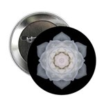 White Rose Button