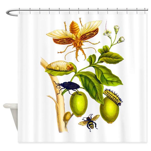 Curtains Ideas botanical shower curtain : Maria Sibylla Merian Botanical Shower Curtain by BirdsandFlowers