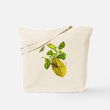 Maria Sibylla Merian Botanical Tote Bag