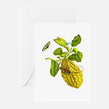 Maria Sibylla Merian Botanical Greeting Cards (Pk