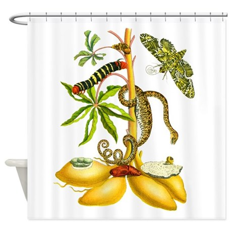 maria sibylla merian botanical shower curtain