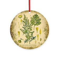 Absinthe Botanical Illustration Ornament (Round)