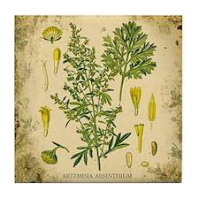 Absinthe Botanical Illustration Tile Coaster