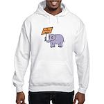 ALWAYS RIGHT Hooded Sweatshirt
