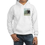 Hooded Sweatshirt: LST Refitted To Civilian Use