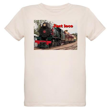 Just loco: Pichi Richi steam engine, Australia Org