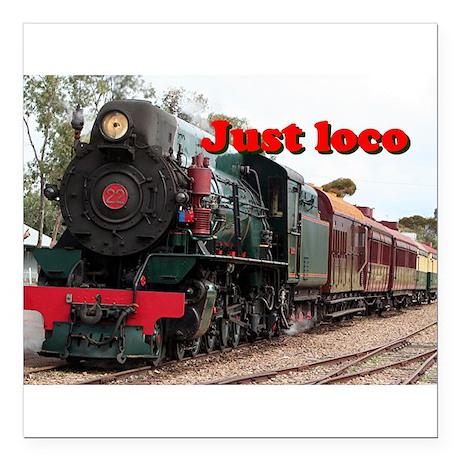 Just loco: Pichi Richi steam engine, Australia Squ