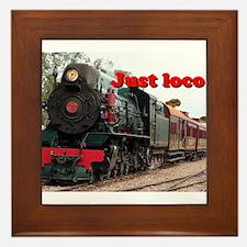 Just loco: Pichi Richi steam engine, Australia Fra