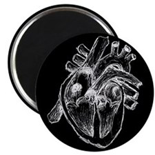 Human Heart Drawing Magnet