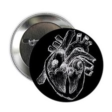 "Human Heart Drawing 2.25"" Button"