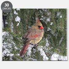 Cardinal Puzzle