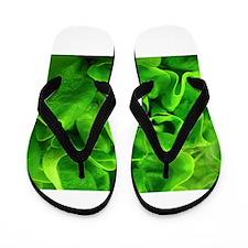 Lettuce Flip Flops