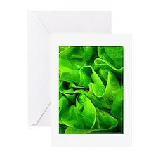 Lettuce Greeting Cards (Pk of 20)