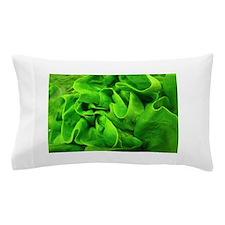 Lettuce Pillow Case