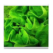 Lettuce Tile Coaster